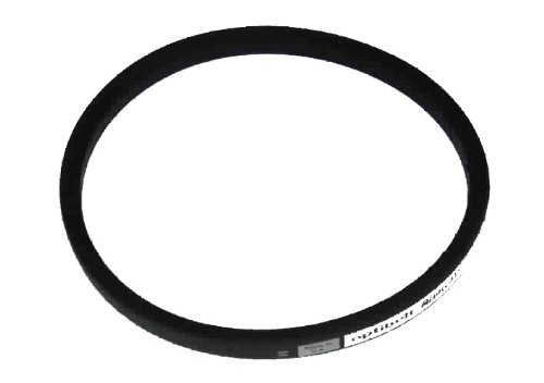 Atco/ Qualcast/ Suffolk Punch lawn mower drive belt F016T40787 V